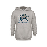 Youth Grey Fleece Hood-Utah State Stacked w/  Mascot