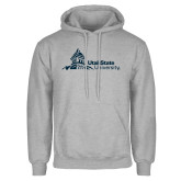 Grey Fleece Hoodie-University Mark Horizontal