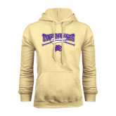 Champion Vegas Gold Fleece Hood-Baseball Crossed Bats Design