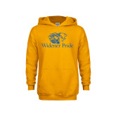 Youth Gold Fleece Hoodie-Widener Pride