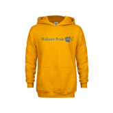 Youth Gold Fleece Hoodie-Widener Pride Flat