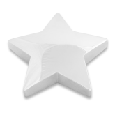 Silver Star Paperweight-Select-A-Logo